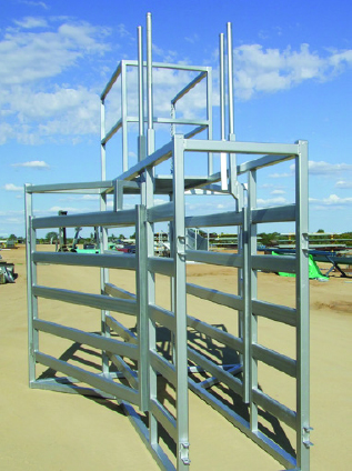 5 way race draft cattle handling equipment