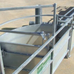 Calf safe T-force cattle handling equipment